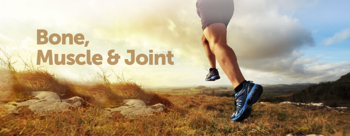 bone muscle and joint health